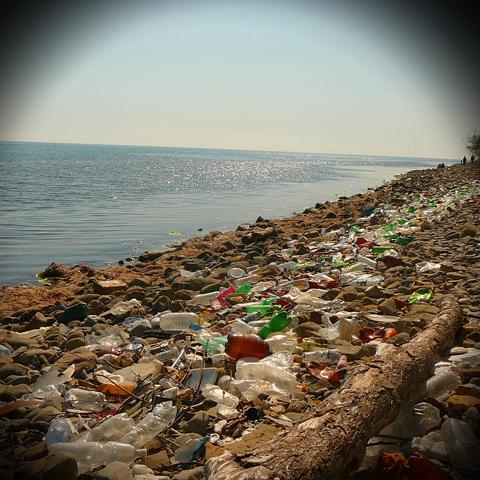 """""""Procter & Gamble"""" изготовит упаковку из переработанного пластика"""